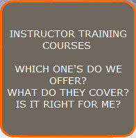Go to the Instructor Courses Page